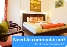 Need Accommodation?